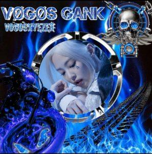 Vogos